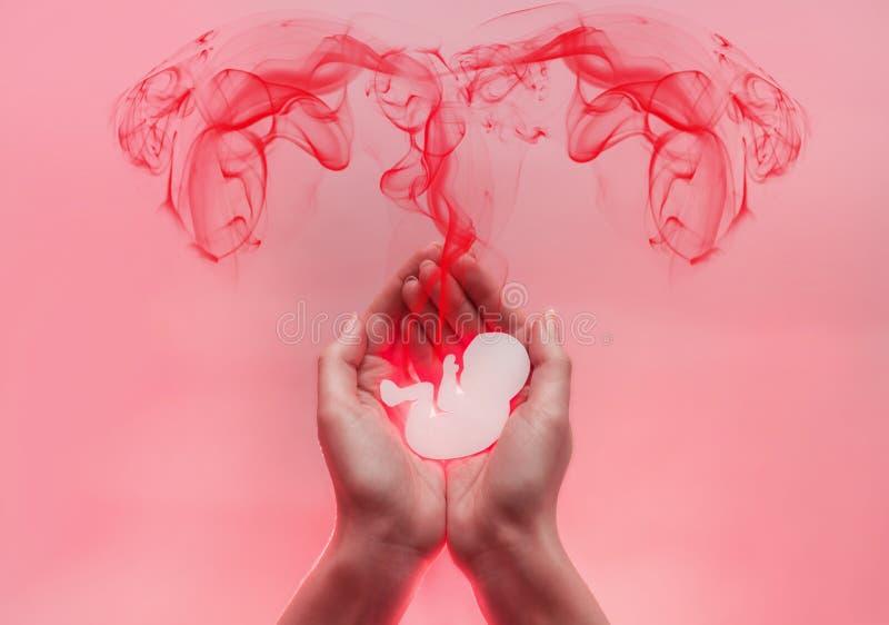 Las palmas de la mujer comprimieron y guardan el embrión del papel El lood rojo viene del bebé bajo la forma de tubos de falopio  foto de archivo