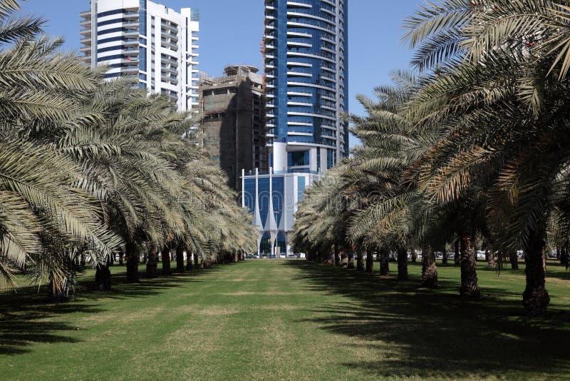 Las palmeras estacionan en la ciudad de Sharja fotos de archivo libres de regalías