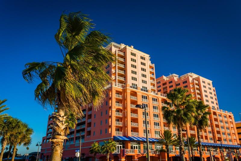 Las palmeras y el hotel grande en Clearwater varan, la Florida imagen de archivo