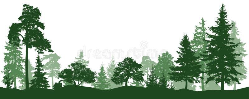 Las, park, aleja Krajobraz odosobneni drzewa royalty ilustracja