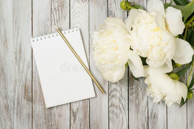 Las peonías blancas florecen con el cuaderno y el lápiz en tablones de madera pintados blanco Lugar para el texto Visión superior imágenes de archivo libres de regalías
