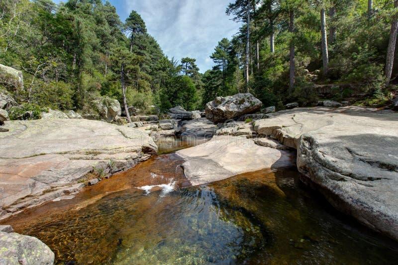 Las pequeñas cascadas y las piscinas naturales de Aitone en Córcega - Francia foto de archivo libre de regalías