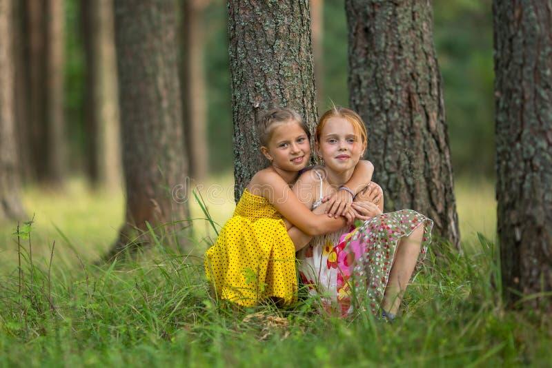 Las pequeñas hermanas se están sentando cerca de un árbol en el parque Naturaleza fotos de archivo libres de regalías
