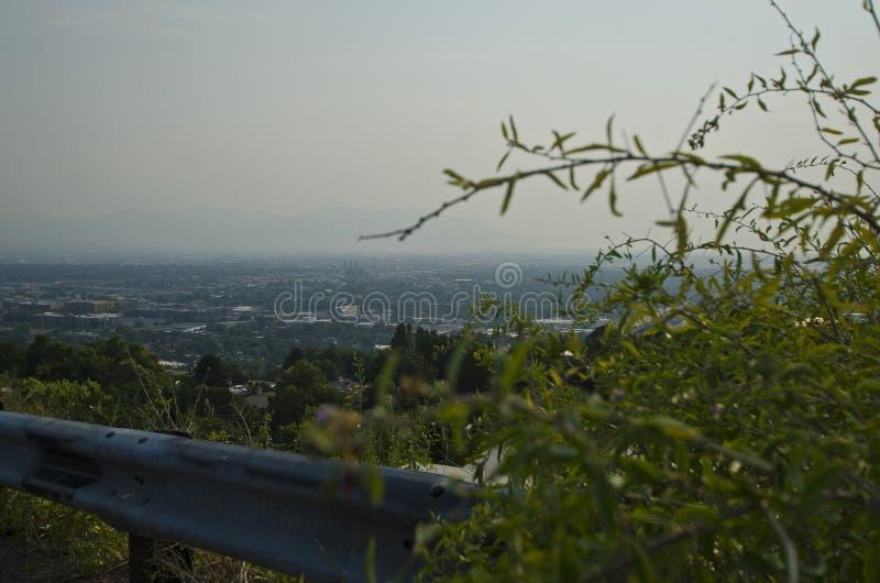 Las pequeñas ramitas secas en el borde de la carretera sobre la niebla con humo llenaron el valle de Salt Lake City foto de archivo libre de regalías