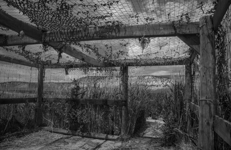 Las persianas a lo largo de la impulsión de la fauna, marrones de la observación de pájaros parquean en Colorado, blanco y negro fotografía de archivo