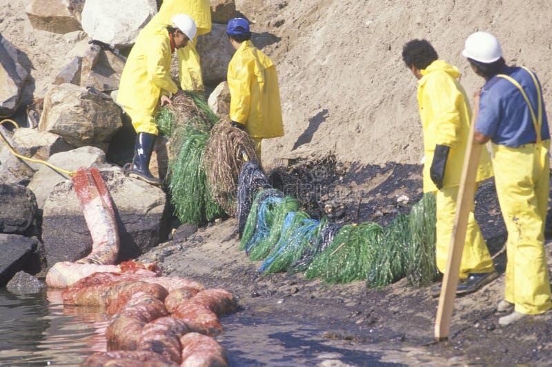 Las personas de ecologistas limpian foto de archivo