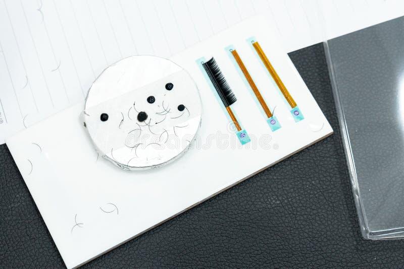 Las pestañas y el pegamento falsos en de cerámica, pestaña de la formación básica exten fotografía de archivo