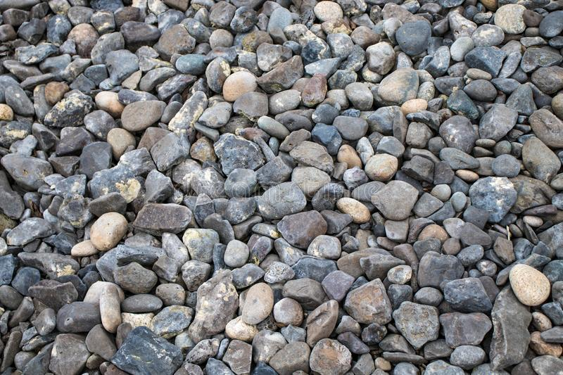 Las piedras de la grava del guijarro molieron la naturaleza redonda del fondo de la textura de la roca del papel pintado de la pl imagenes de archivo
