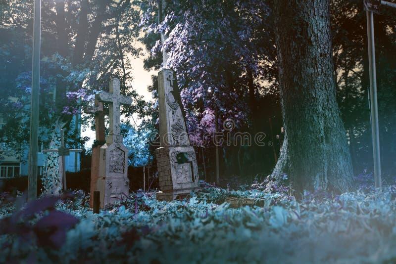 Las piedras sepulcrales viejas arruinan en el bosque del autmn, cementerio por la tarde, noche, luz de luna, foco selectivo, back imagen de archivo libre de regalías