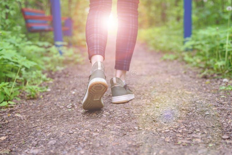 Las piernas femeninas delgadas en polainas de la tela escocesa y zapatillas de deporte verdes van a lo largo del rastro del bosqu fotografía de archivo