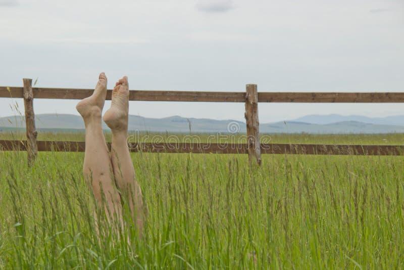 Las piernas femeninas hermosas aumentaron para arriba en la hierba verde foto de archivo libre de regalías