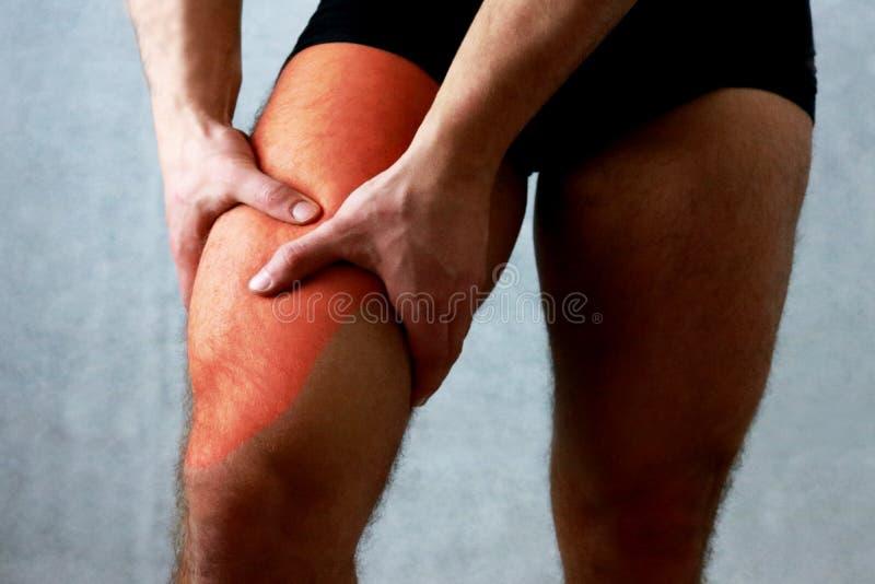 Las piernas femorales del dolor del muslo de cuadriceps del dolor cupieron el músculo imagenes de archivo