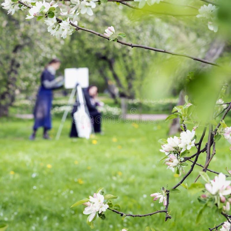 Las pinturas de la muchacha dibujan en la lona del caballete en parque con Sakura floreciente Imagen borrosa para el fondo creati imágenes de archivo libres de regalías