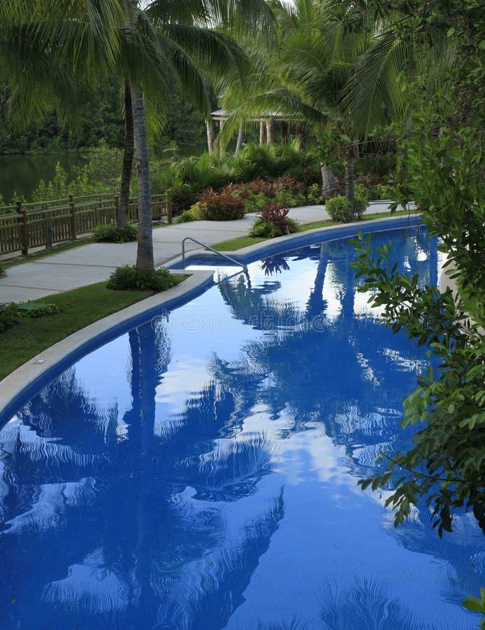 Las piscinas en el maya de Vidanta Riviera fotografía de archivo libre de regalías