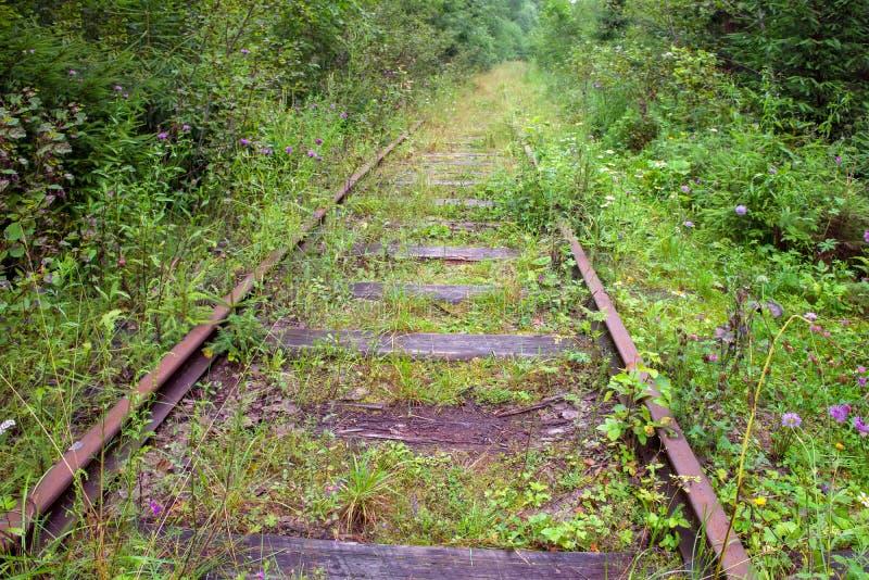 Las pistas de ferrocarril viejas del Valdai-Krattsy alinean fotografía de archivo libre de regalías