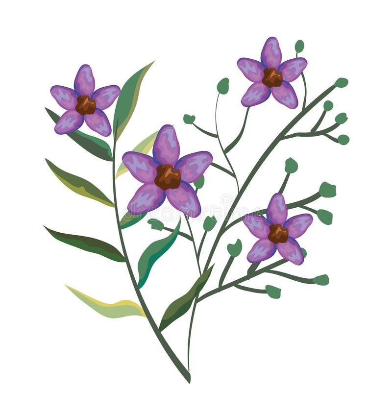 Las plantas de las flores con las hojas exóticas diseñan ilustración del vector