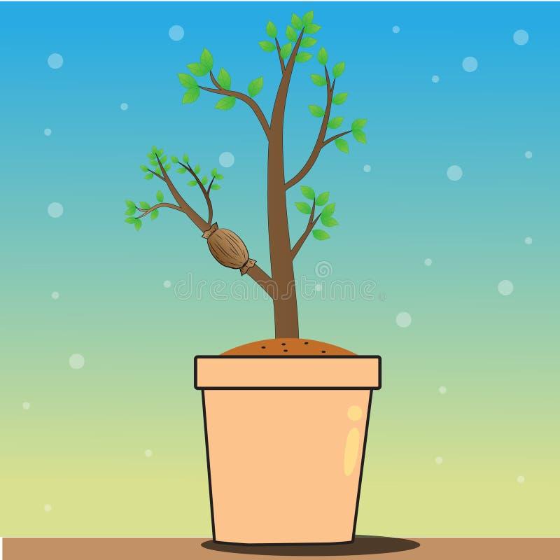 Las plantas del injerto ilustración del vector