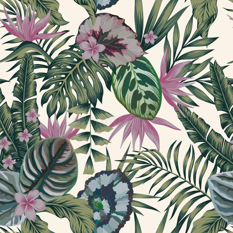 Las plantas tropicales salen las flores de color abstracto CCB inconsútil del blanco libre illustration