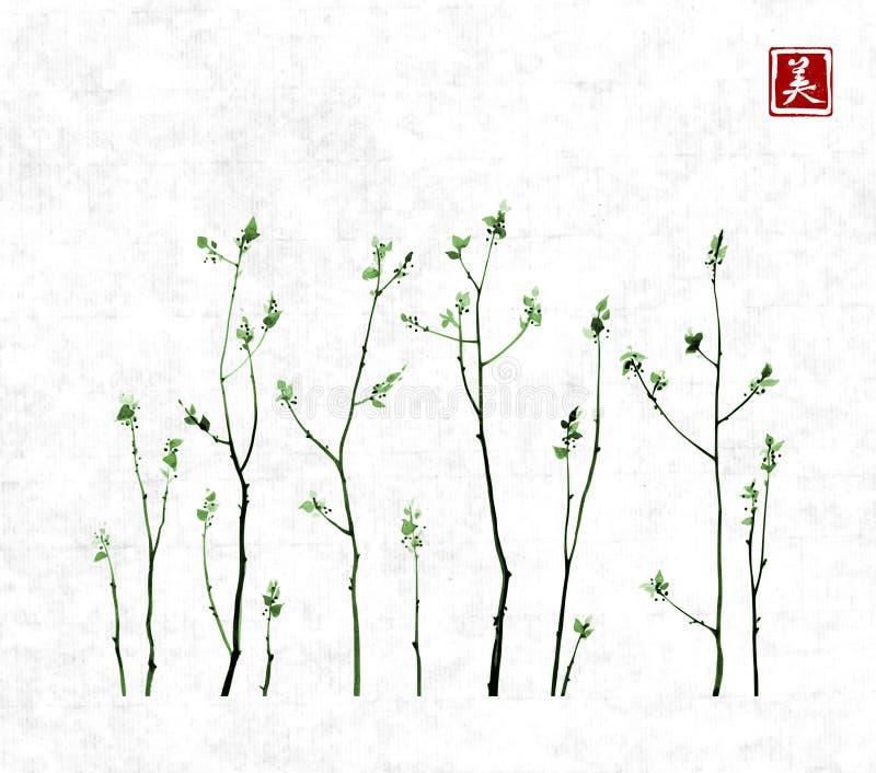 Las Ramas De árbol Con Verde Fresco Se Van En Fondo Del Papel De ...