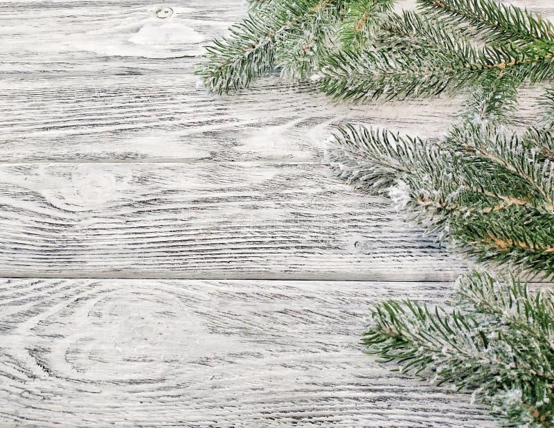 Las ramas del pino nevado en un fondo de madera imagen de archivo