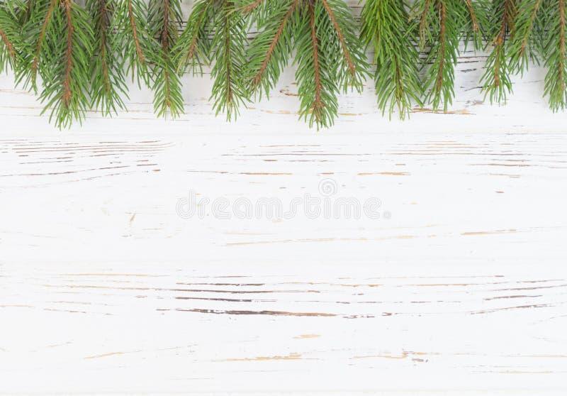 Las ramas eran abetos contra un fondo blanco del árbol Fondo del `s del Año Nuevo Inserte el texto imagen de archivo