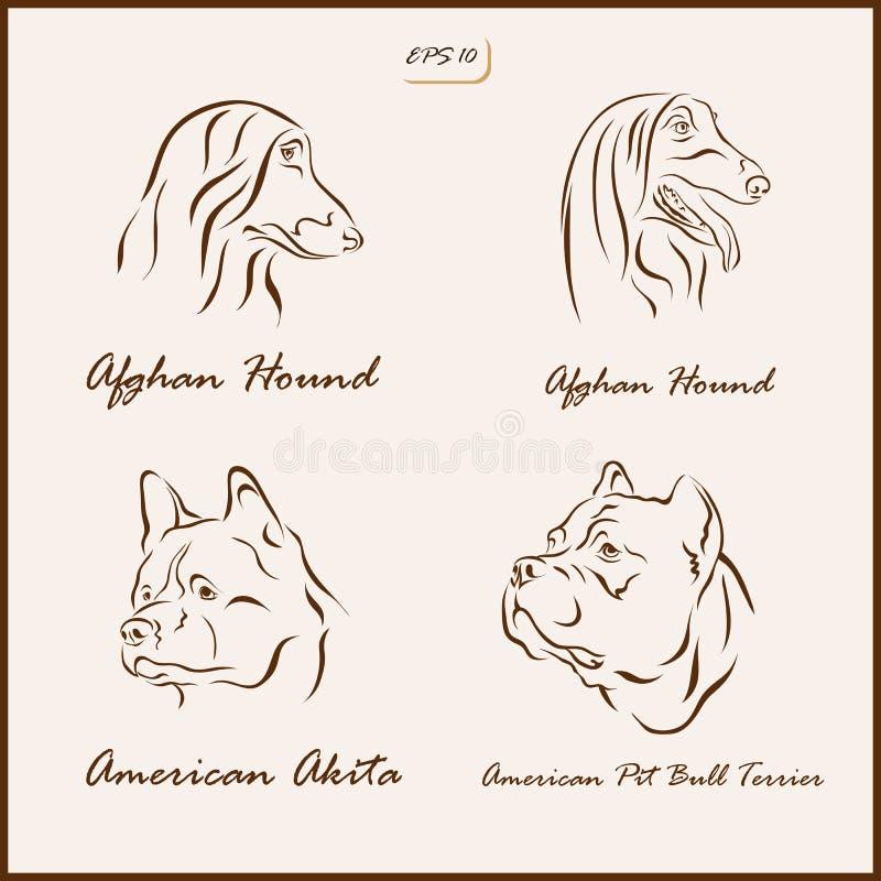 Las razas del perro ilustración del vector