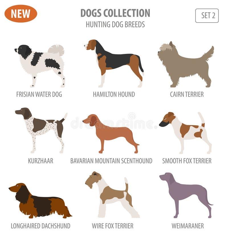 Las razas del perro de caza fijaron el icono aislado en blanco Estilo plano libre illustration