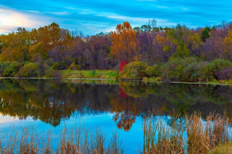 Las reflexiones en el agua, usted es lo que usted ve imágenes de archivo libres de regalías
