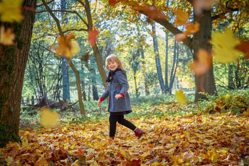 Las risas y los juegos de la muchacha con las hojas de otoño fotos de archivo
