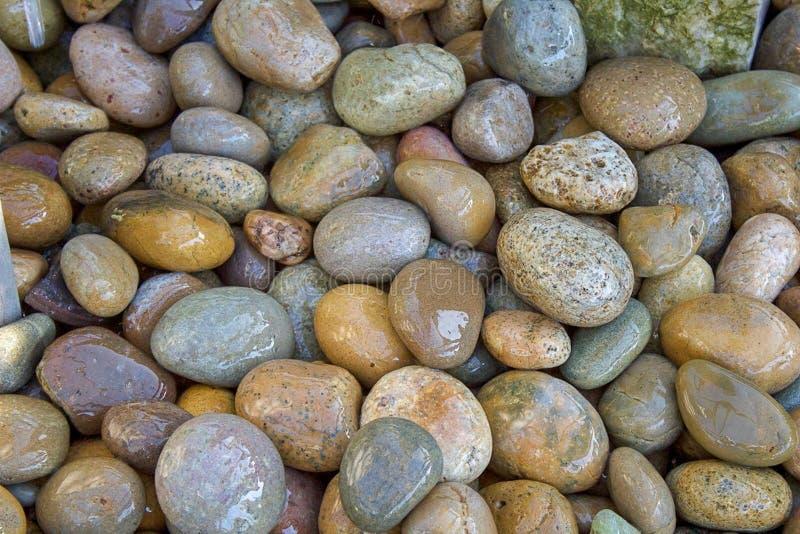 Las rocas mojadas del río se cierran para arriba imagen de archivo libre de regalías