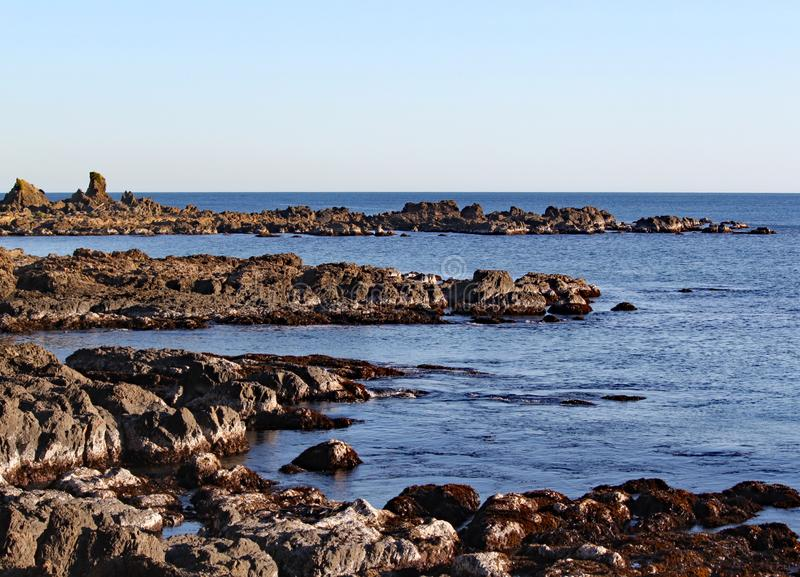Las rocas rugosas en el punto del Moa en Wellington, Nueva Zelanda imagenes de archivo