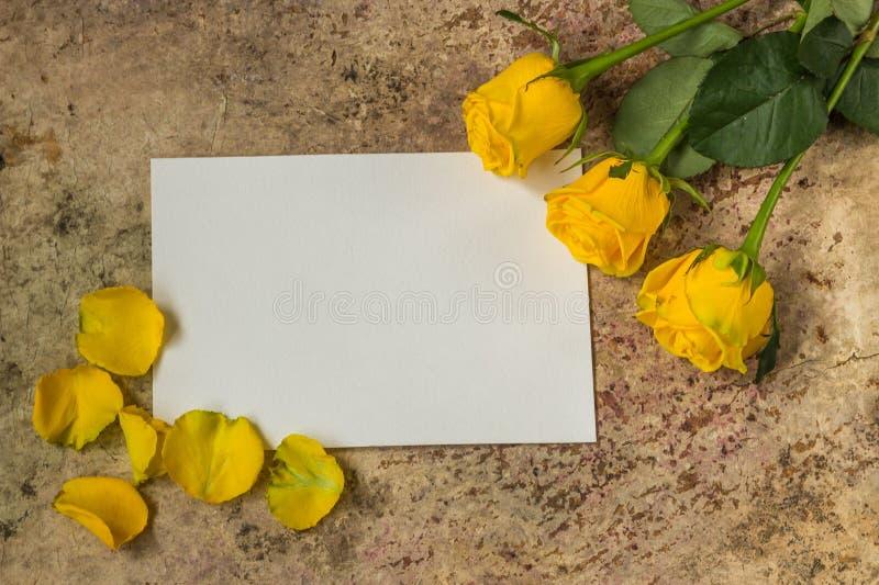 Las rosas amarillas florecen, los pétalos y el documento vacío blanco sobre los vagos de madera foto de archivo libre de regalías