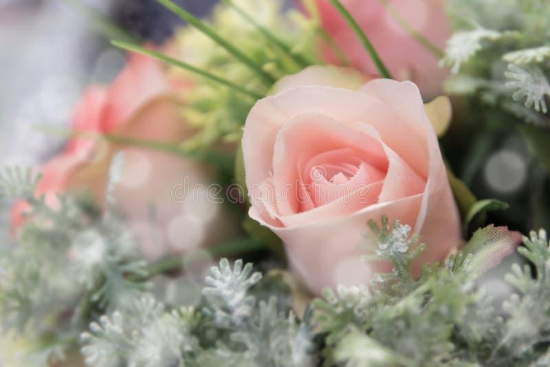 Las rosas dulces del color en bokeh texturizan la falta de definición suave imagenes de archivo