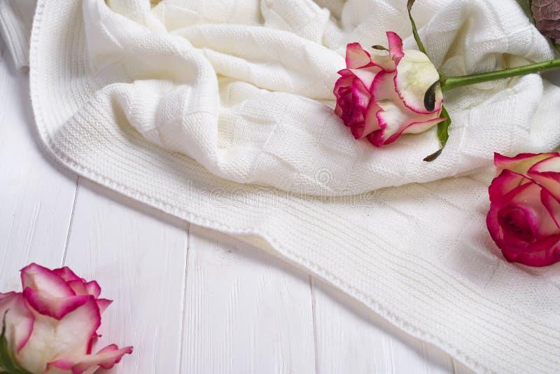 Las rosas enmarcan con la tela escocesa en fondo blanco de madera imagenes de archivo