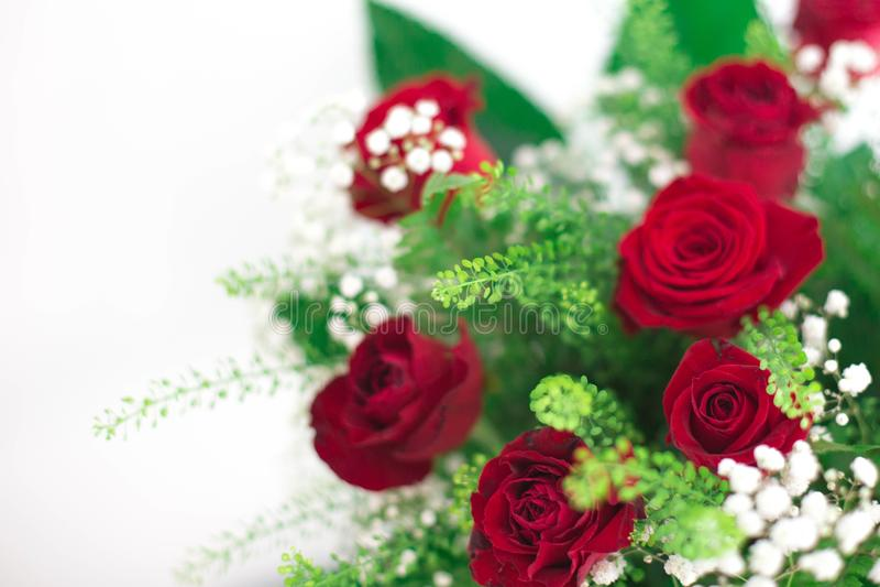 Las rosas rojas del ramo de las flores en el fondo blanco agradecen le y la tarjeta del amor foto de archivo