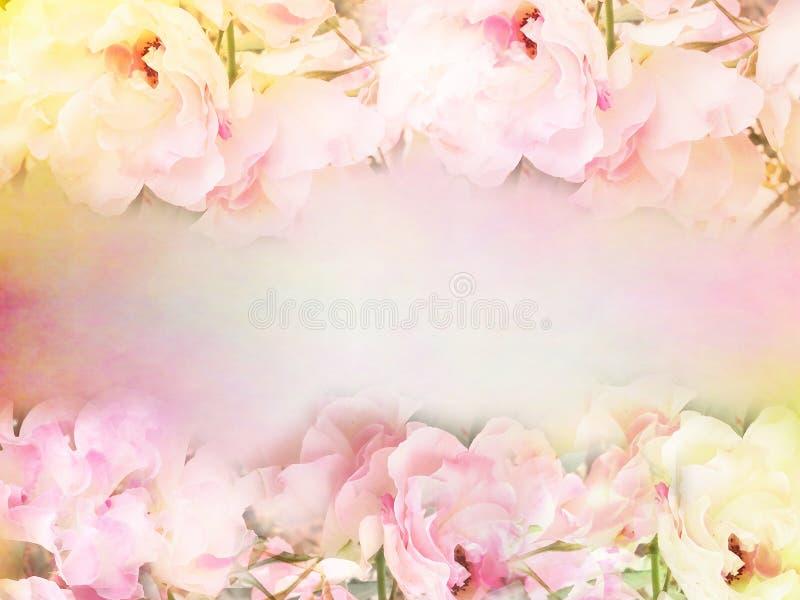las rosas rosadas florecen la frontera y el marco en el color del vintage para el fondo de la tarjeta del día de San Valentín fotos de archivo