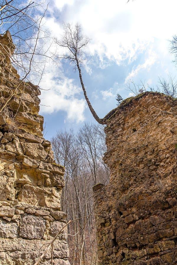 Las ruinas de los diablos del ` tienden un puente sobre el ` en Czerna Polonia fotos de archivo libres de regalías