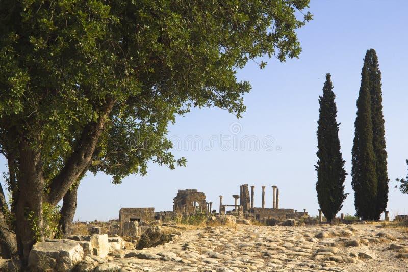 Las ruinas de Volubilis en Marruecos imagen de archivo