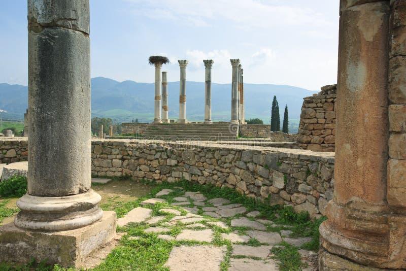 Las ruinas del capitolio de Volubilis foto de archivo libre de regalías