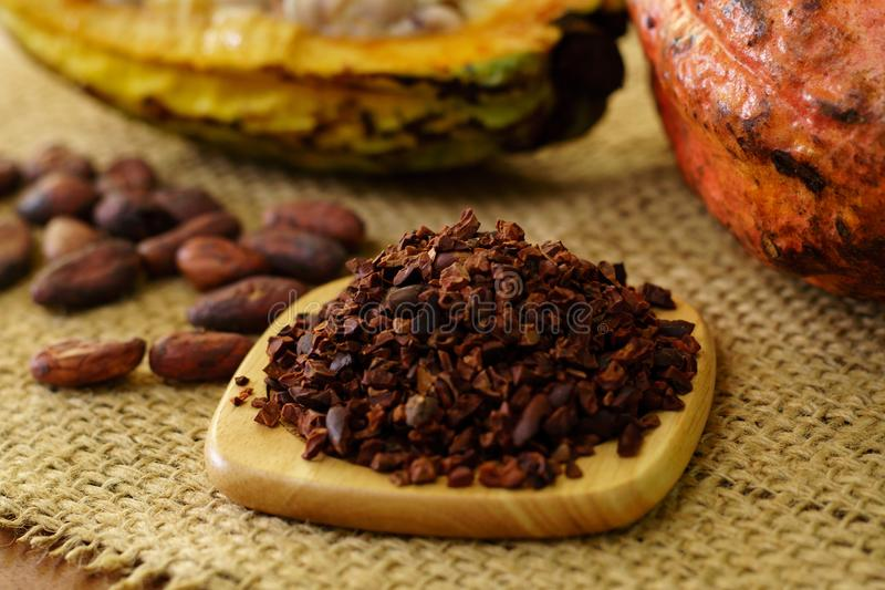 Las semillas del cacao y el cacao crudo dan fruto, las habas del cacao en fondo fotografía de archivo libre de regalías