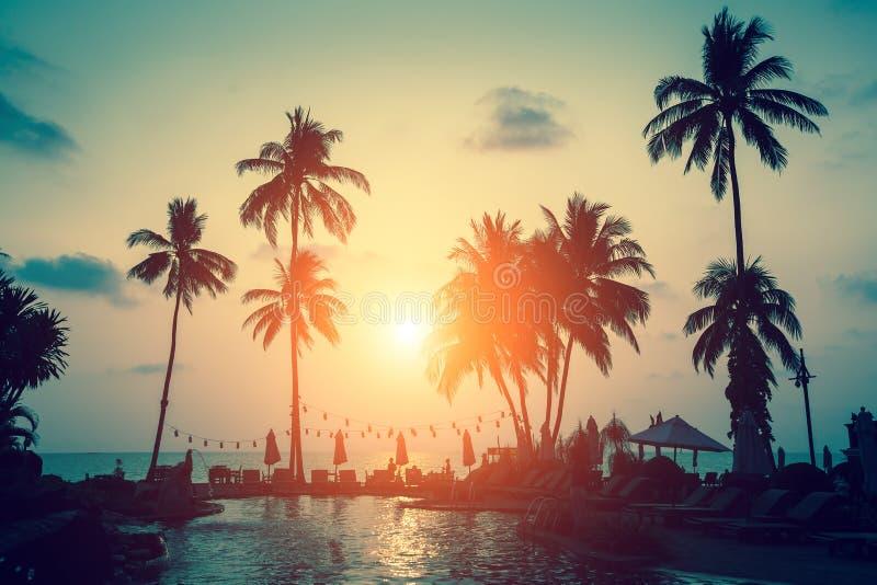 Las siluetas de palmeras en un mar tropical varan fotografía de archivo
