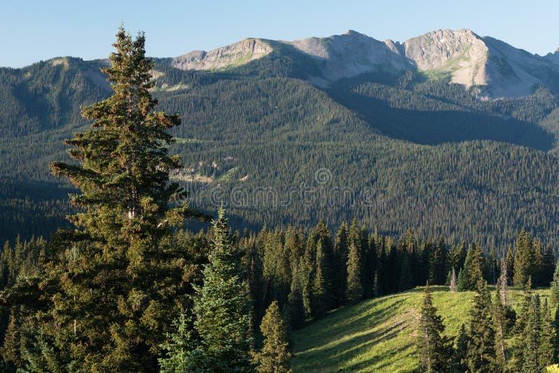Las subidas del pico de Ohio sobre Kebler pasan el camino en Colorado central foto de archivo
