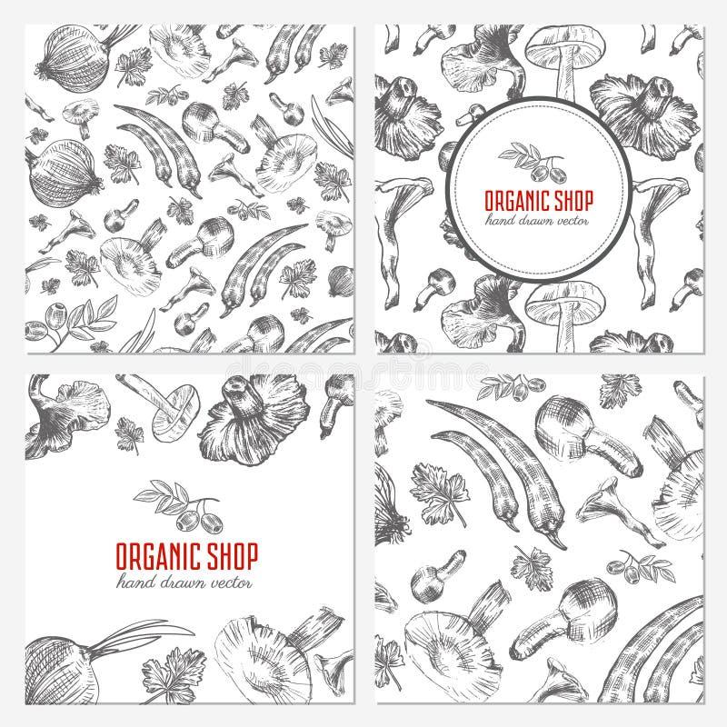 Las tarjetas, banderas con la mano dibujada bosquejan la verdura, setas, aceituna, pimientas, cebolla en blanco, vector inconsúti libre illustration