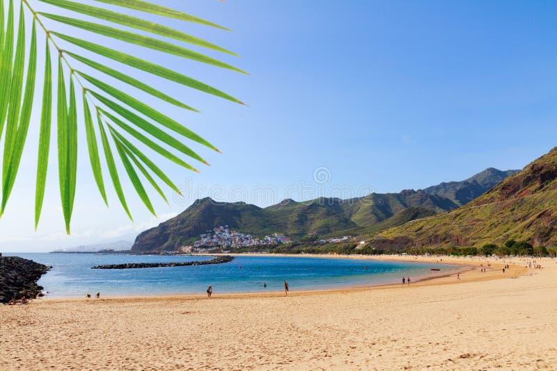 Las Teresitas strand, Tenerife royaltyfri bild