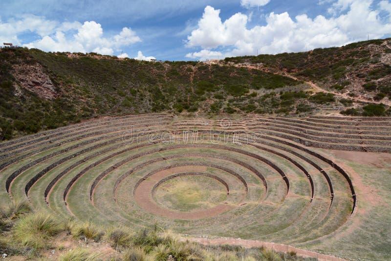 Las terrazas agrícolas Incan moray Valle sagrado Región de Cusco perú fotos de archivo libres de regalías