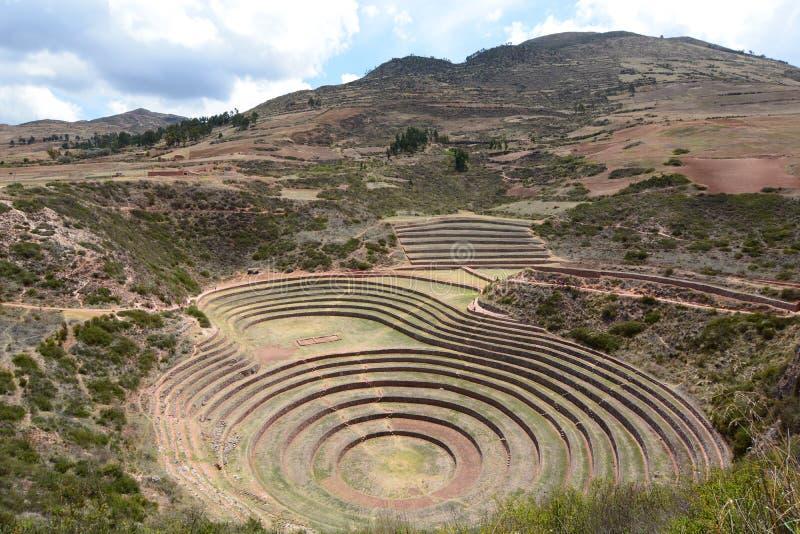 Las terrazas agrícolas Incan moray Valle sagrado Región de Cusco perú imágenes de archivo libres de regalías