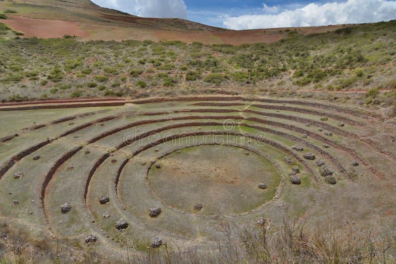 Las terrazas agrícolas Incan moray Valle sagrado Región de Cusco perú fotografía de archivo libre de regalías