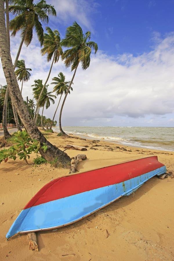 Las Terrenas strand, Samana halvö royaltyfria bilder