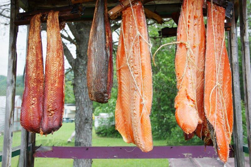Las tiras canadienses de los salmones rojos colgaron para fumar en un estante al aire libre imagen de archivo libre de regalías