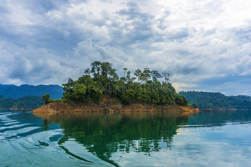 Las tropikalny obraz royalty free